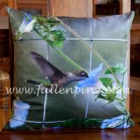 Hummingbird Pillow Front