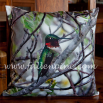 Hummingbird Pillow Front