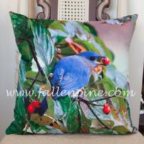 Bluebird Pillow Front