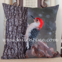 Red-Bellied Woodpecker Pillow Front
