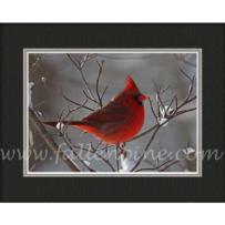 Cardinal Winter 2 SP-45