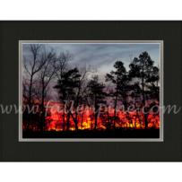 Fiery Ozark Sunrise MP-132