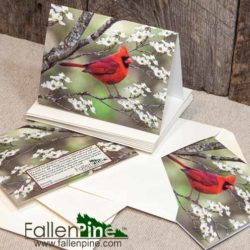 Cardinal Dogwood Notecard