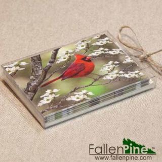 Cardinal Dogwood Notecard