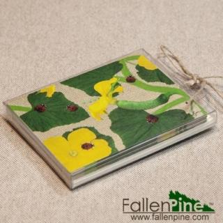 Ladybug Cucumber Notecard